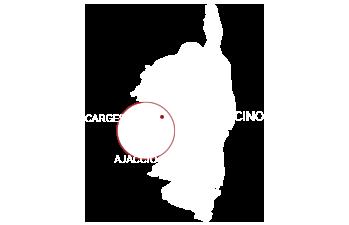 mapcorse